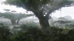 Hometree TGIF Thank God it's Friday Avatar Environmentalism Christian worldview